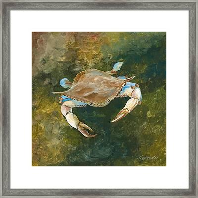 Lighter Blue Crab Framed Print