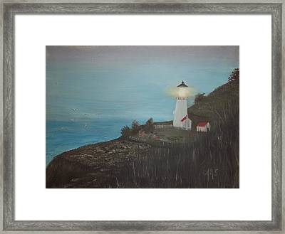 Lighthouse With Birds Framed Print by Angela Stout