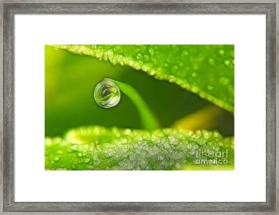 Lighting Drop Framed Print