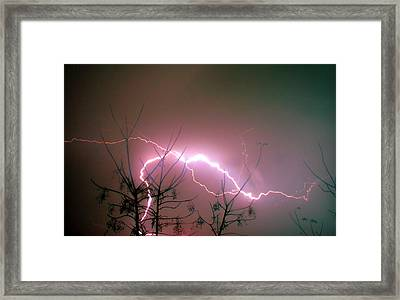 Lightning And Trees Framed Print