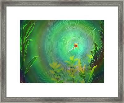 Lightning Spider Framed Print by Helmut Rottler