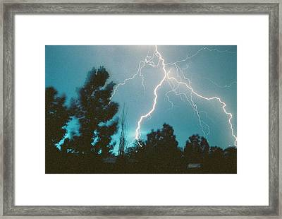 Lightning Trees Framed Print by Trent Mallett