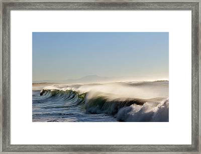 Like Wild Horses Framed Print by Cedric Darrigrand