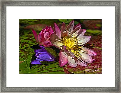 Lilies No. 20 Framed Print