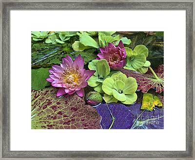 Lilies No. 33 Framed Print