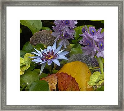 Lilies No. 37 Framed Print by Anne Klar