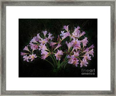 Liliies In The Valley Framed Print by Marsha Heiken