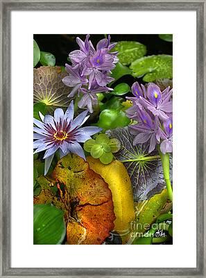 Lillies No. 6 Framed Print by Anne Klar