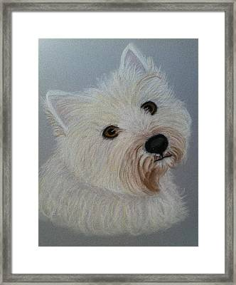Lilly A Pastel Portrait Framed Print by Hillary Rose