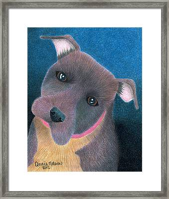 Lilly Framed Print by Annie Nelson
