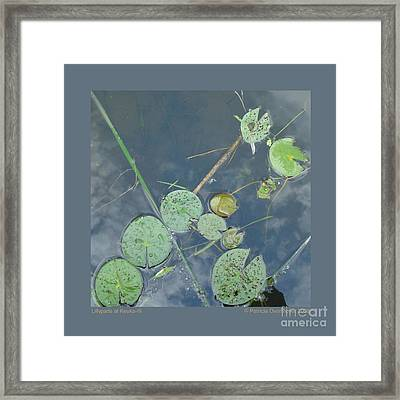 Framed Print featuring the photograph Lillypads At Keuka-iii by Patricia Overmoyer