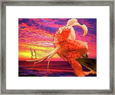 Lily At Sunset Framed Print