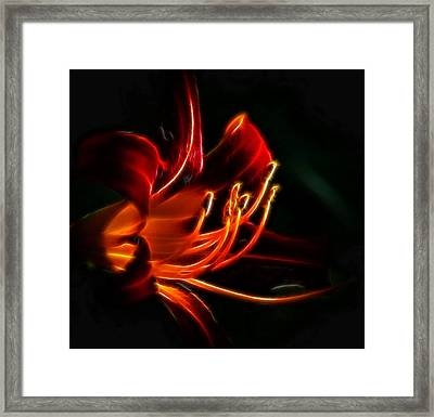 Framed Print featuring the photograph Lily Flame by Joetta West