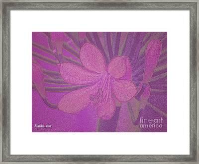 Lily Fleur Line Framed Print