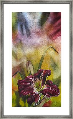 Lily In Red Framed Print by Alfred Ng