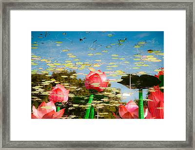 Lilys In The Sky Framed Print