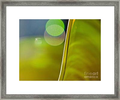 Lime Abstract Two Framed Print by Dana Kern