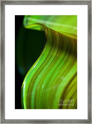 Lime Curl Ll Framed Print by Dana Kern