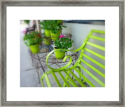 Lime Green Framed Print by Cindy Wright
