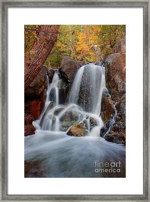 Lincoln Creek Framed Print by Jamie Rabold