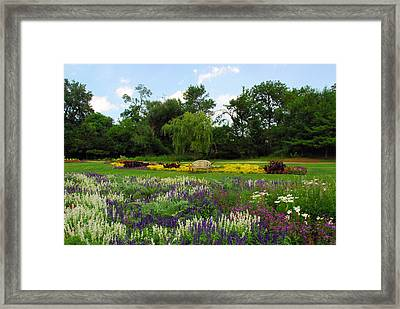 Framed Print featuring the photograph Lincoln Park Gardens by Lynn Bauer