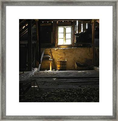 Linden Flowers Left To Dry In The Attic Framed Print by Draia Coralia