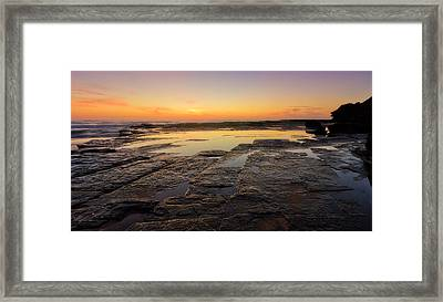 Lines Of Nature Framed Print by Mark Lucey
