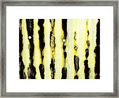 Lines Of Rust Framed Print by Jason Michael Roust