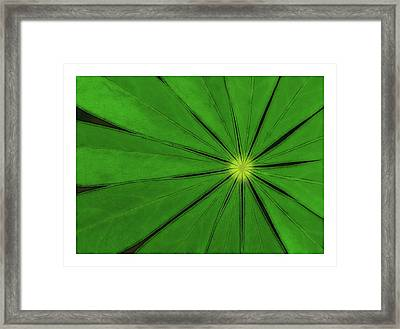 Lines Out Framed Print by A. McKinnon Photography