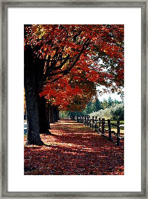 Linn Run 3 Pa Framed Print