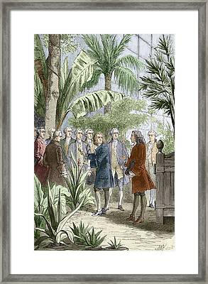 Linnaeus And De Jussieu, Botanists Framed Print
