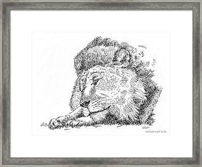 Lion-art-black-white Framed Print by Gordon Punt