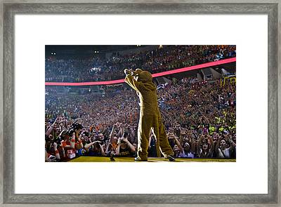 Lion Diamonds Up Framed Print