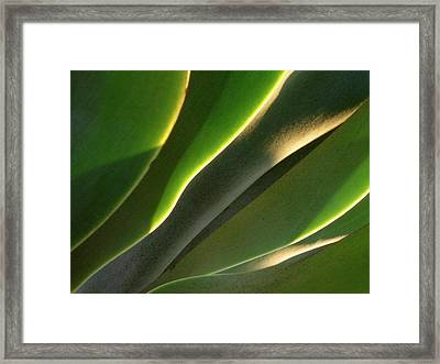 Lips Framed Print