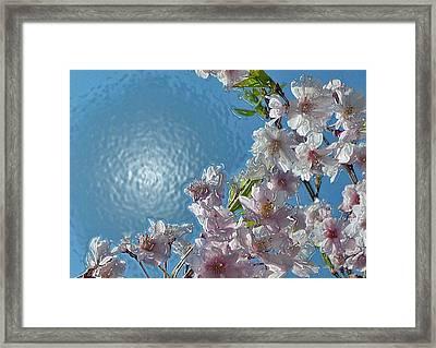Liquid Cherry Framed Print by Jen White