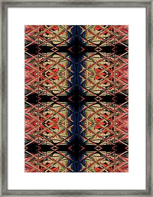 Lit0911001009 Framed Print by Tres Folia