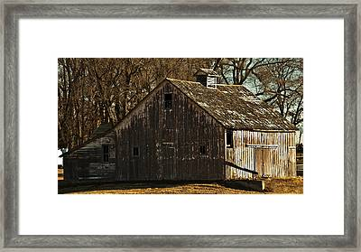 Little Activity Framed Print by Edward Peterson