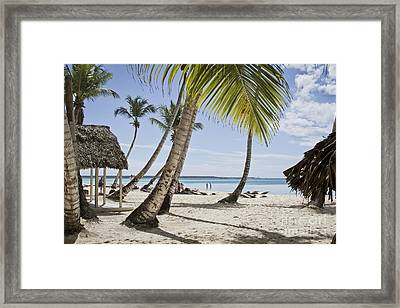 Little Big Paradise Framed Print by Nacho Miyashiro