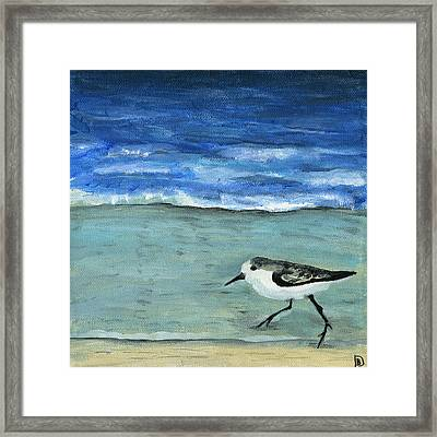 Little Bird At The Beach Framed Print