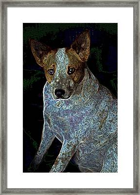 Little Blue Framed Print by One Rude Dawg Orcutt