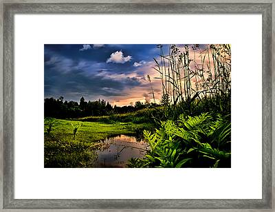 Little Cove Framed Print by Gary Smith