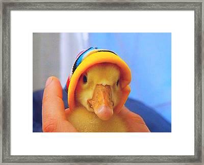 Framed Print featuring the painting Little Dodo by Bogdan Floridana Oana