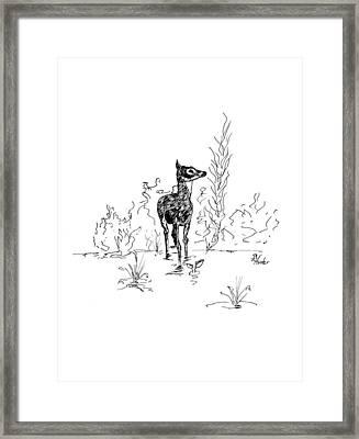 Little Fawn Framed Print