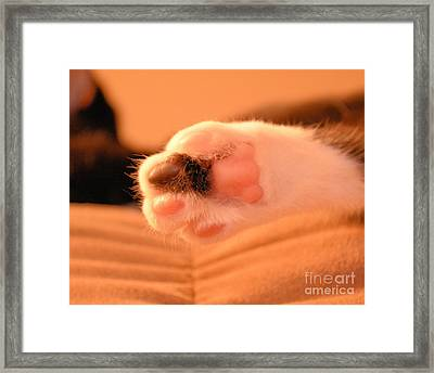 Little Foot Framed Print