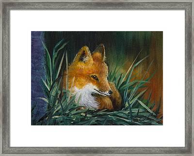 Little Kit Framed Print by Dee Carpenter