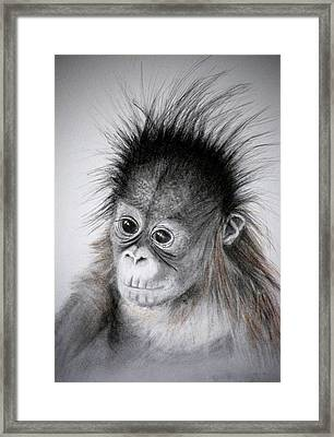 Framed Print featuring the drawing Little Orphan by Lynn Hughes
