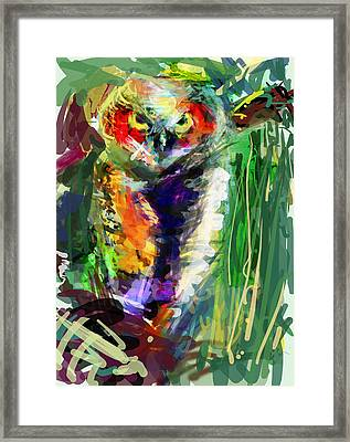 Little Owl But Big Framed Print by James Thomas