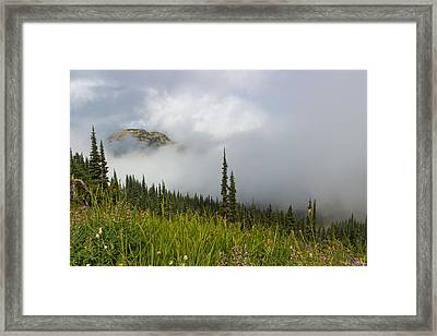 Little Slice Of Heaven Framed Print by Heidi Smith