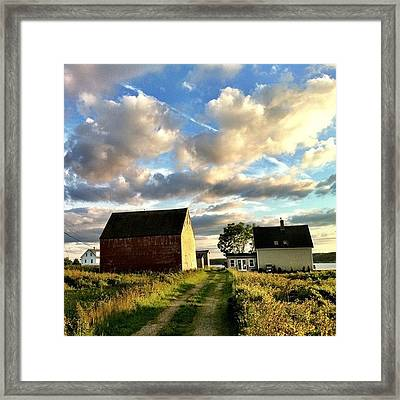 Little Tancook Island Farmhouse Framed Print by Luke Kingma