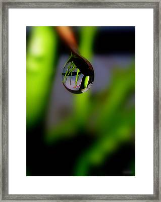 Little World Framed Print